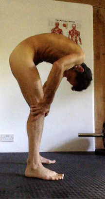 A position to adopt for erect penis in naked personal training